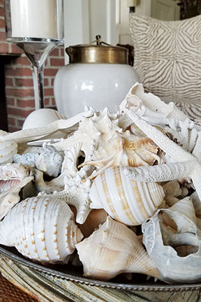 You can almost feel the sand between your toes while gazing at this bowl of shells.