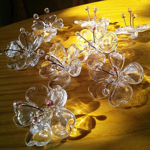 dreaming of spring #glass #cherryblossom many more to make for next #kimono