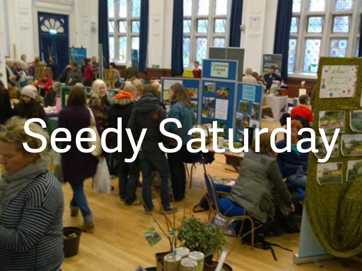 Seedy Saturday Lewes