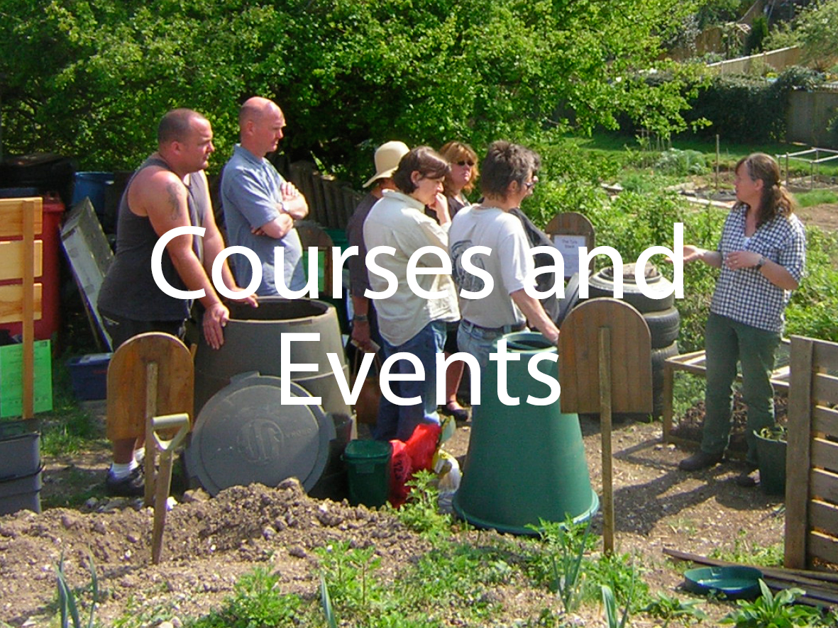 Link to Courses and Events Page