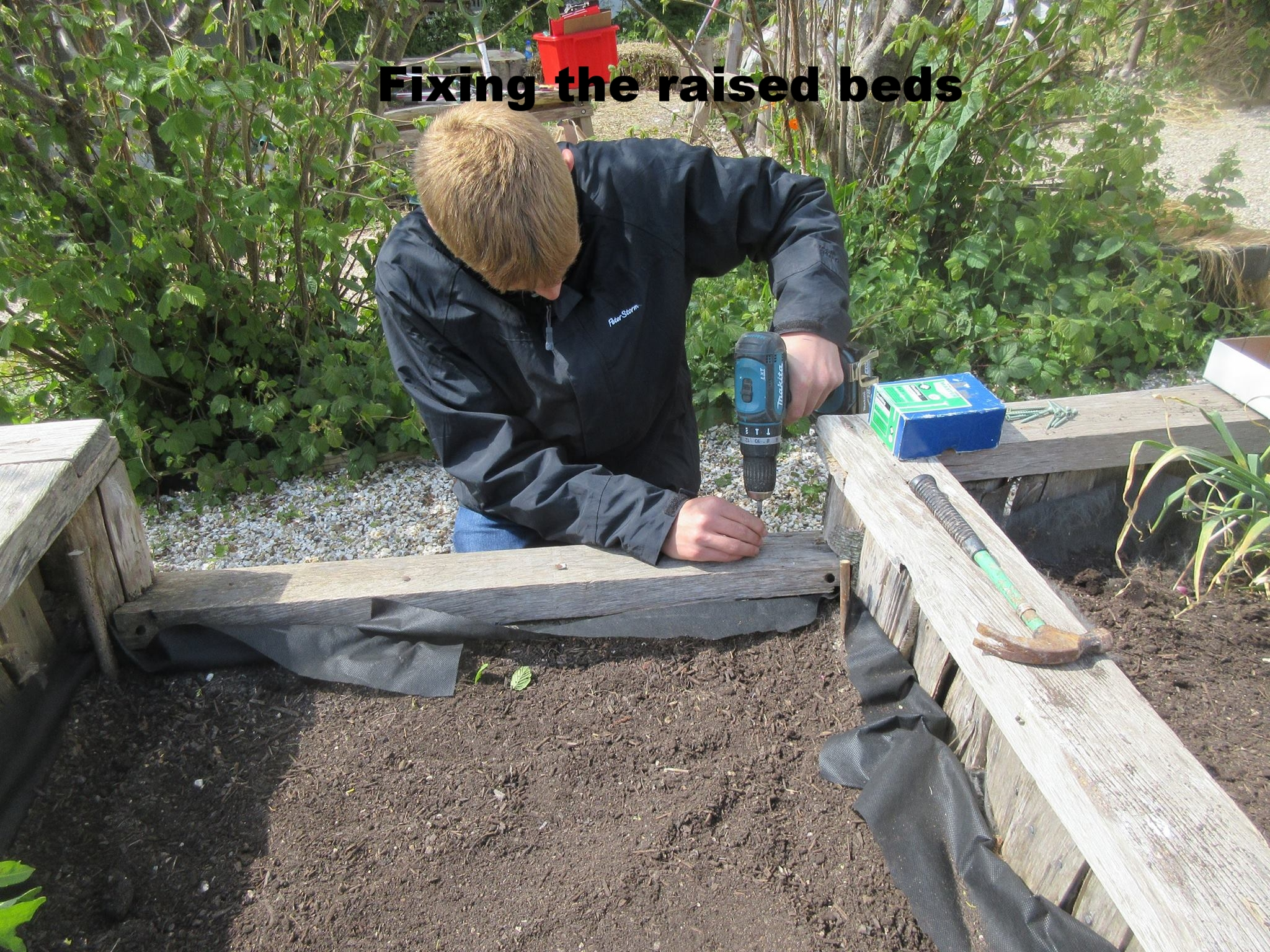 mending raised beds lca apr 2017.jpg