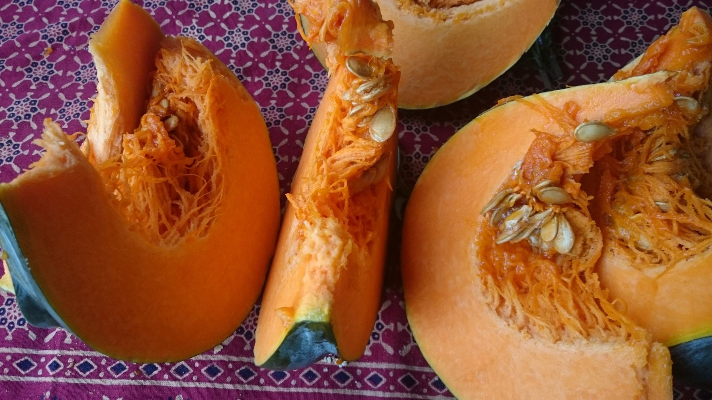 pumpkin dec 2015.jpg