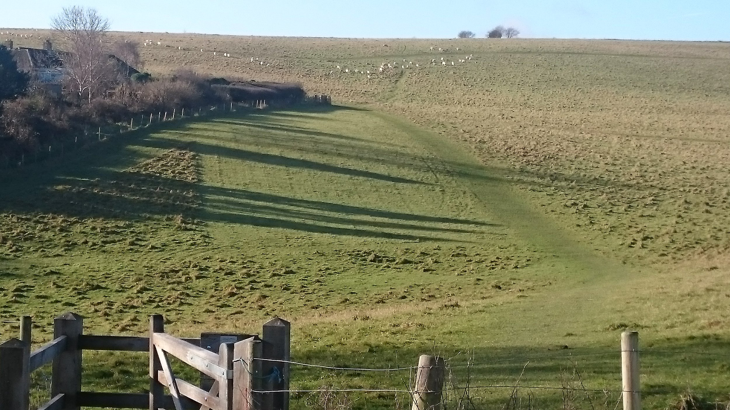 Long winter shadows on our walk