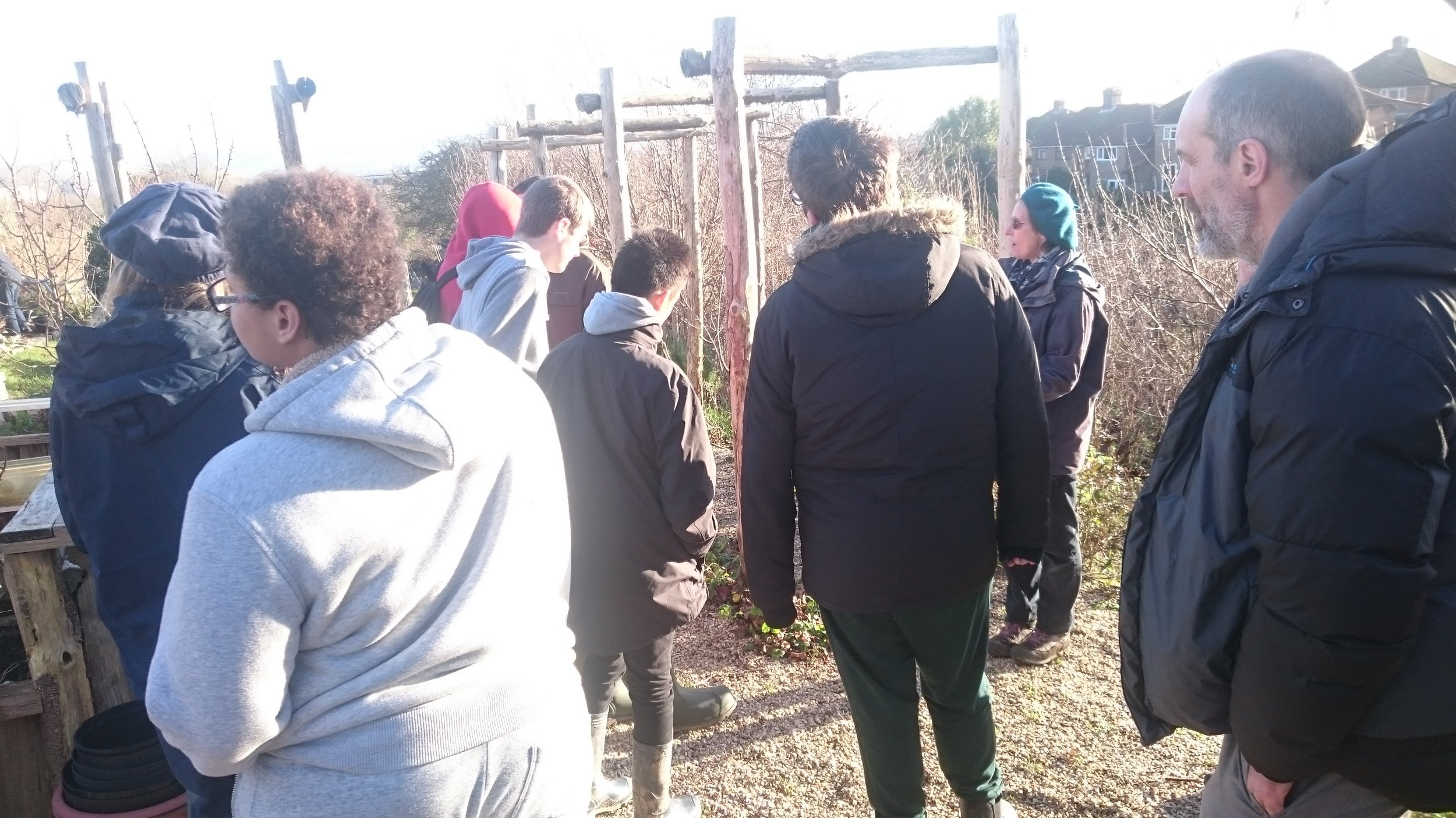 Rural Pathways group arrive at the allotment