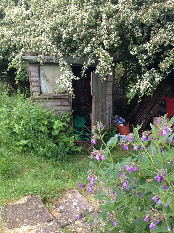 lca old shed.jpg