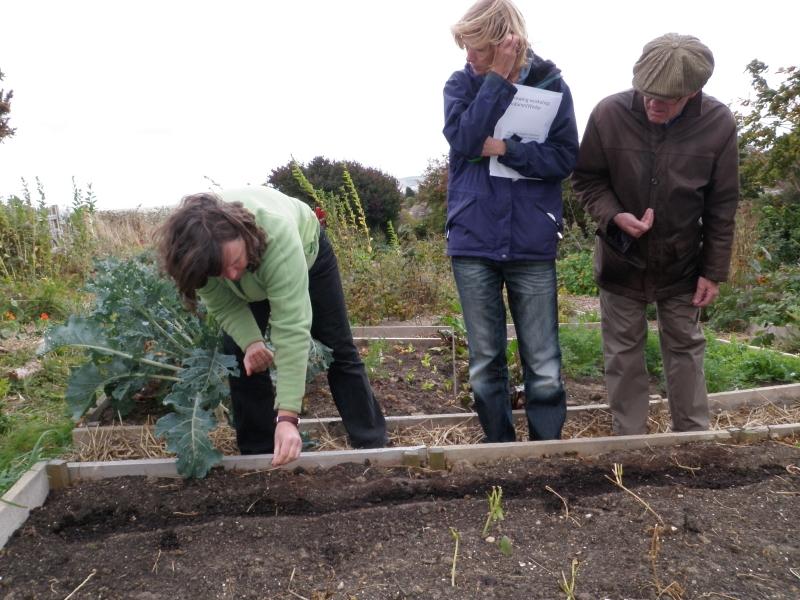 Demonstrating planting