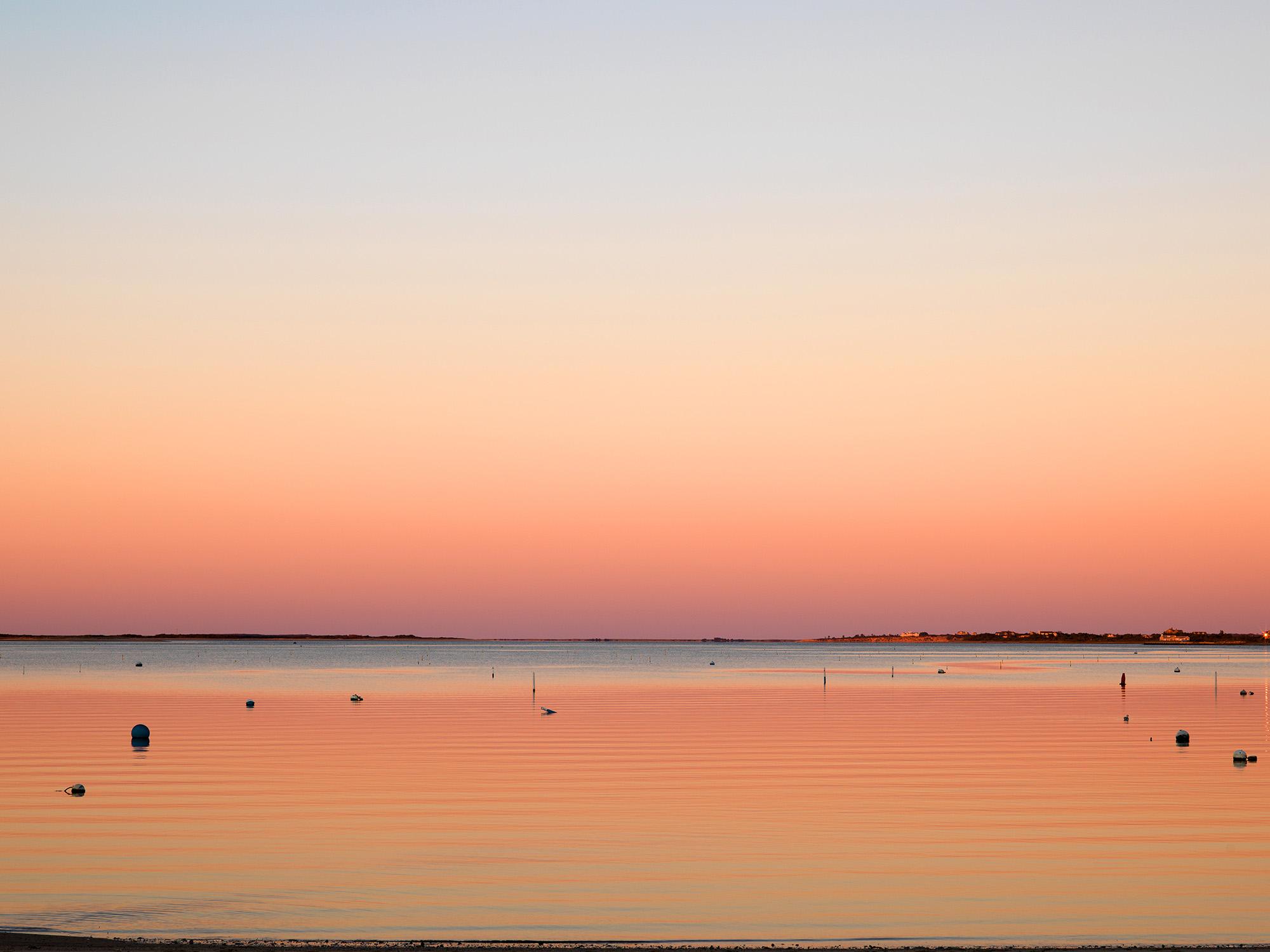 Nantucket Delight