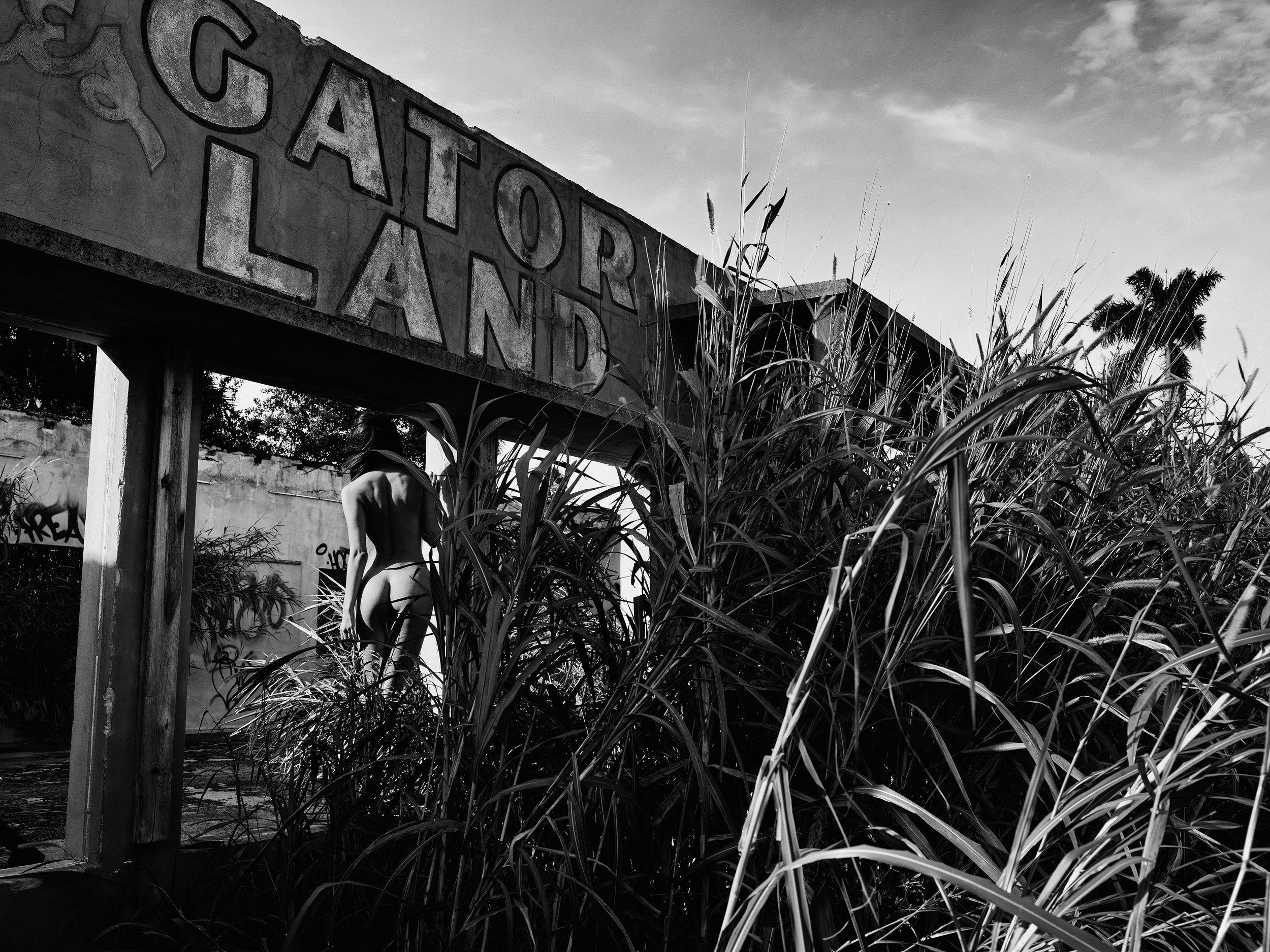 GATOR LAND