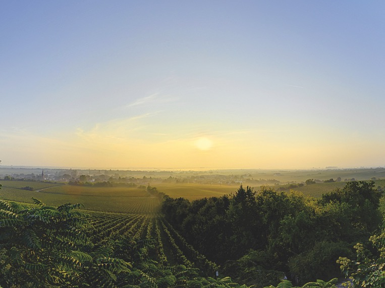 Im Weingut TEGERNSEERHOF kehrt das Weingut VON WINNING ein