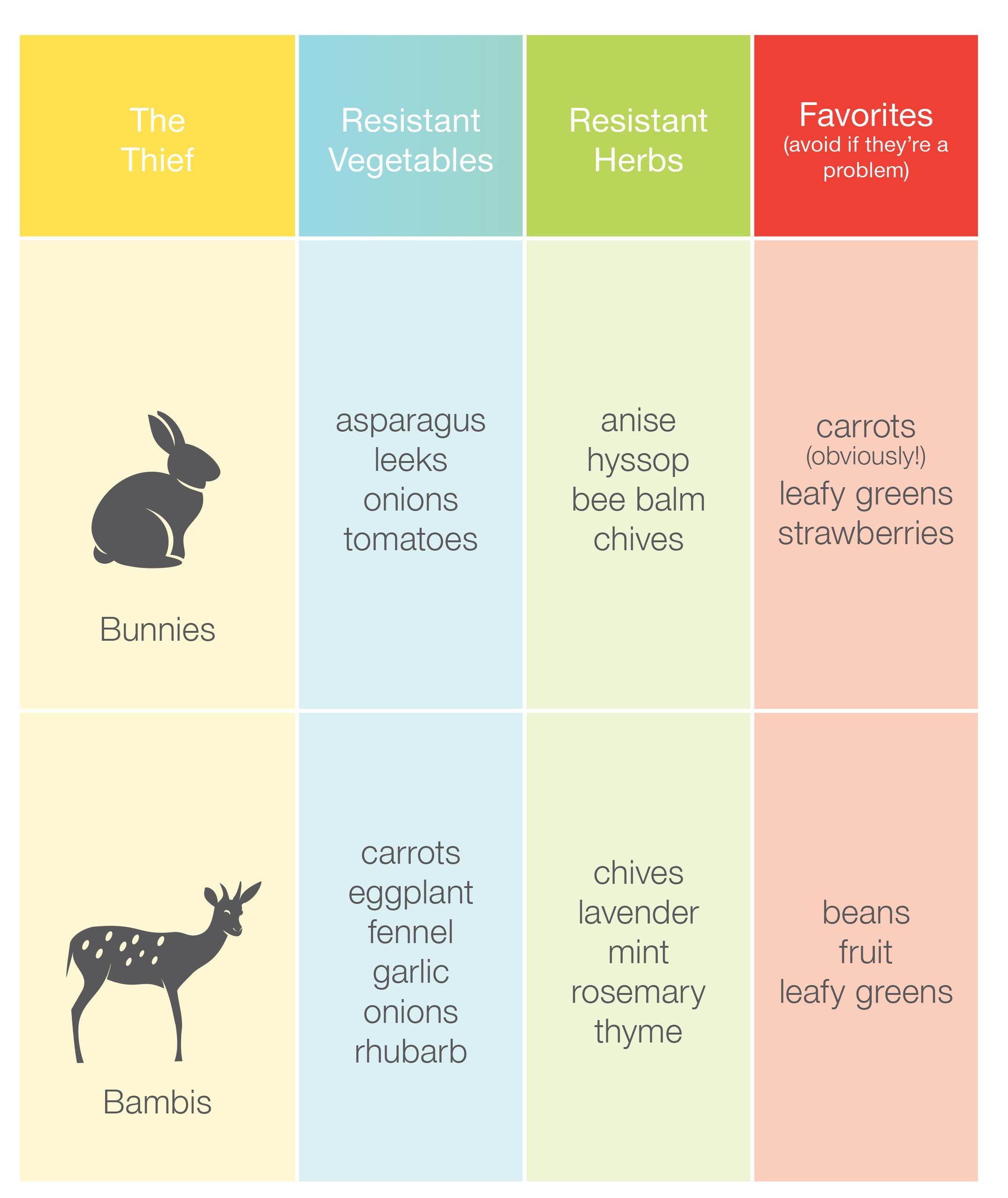 Critters-Rabbit and Deer chart.jpg