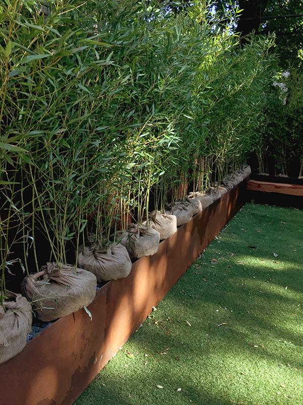 bamboo install.jpg