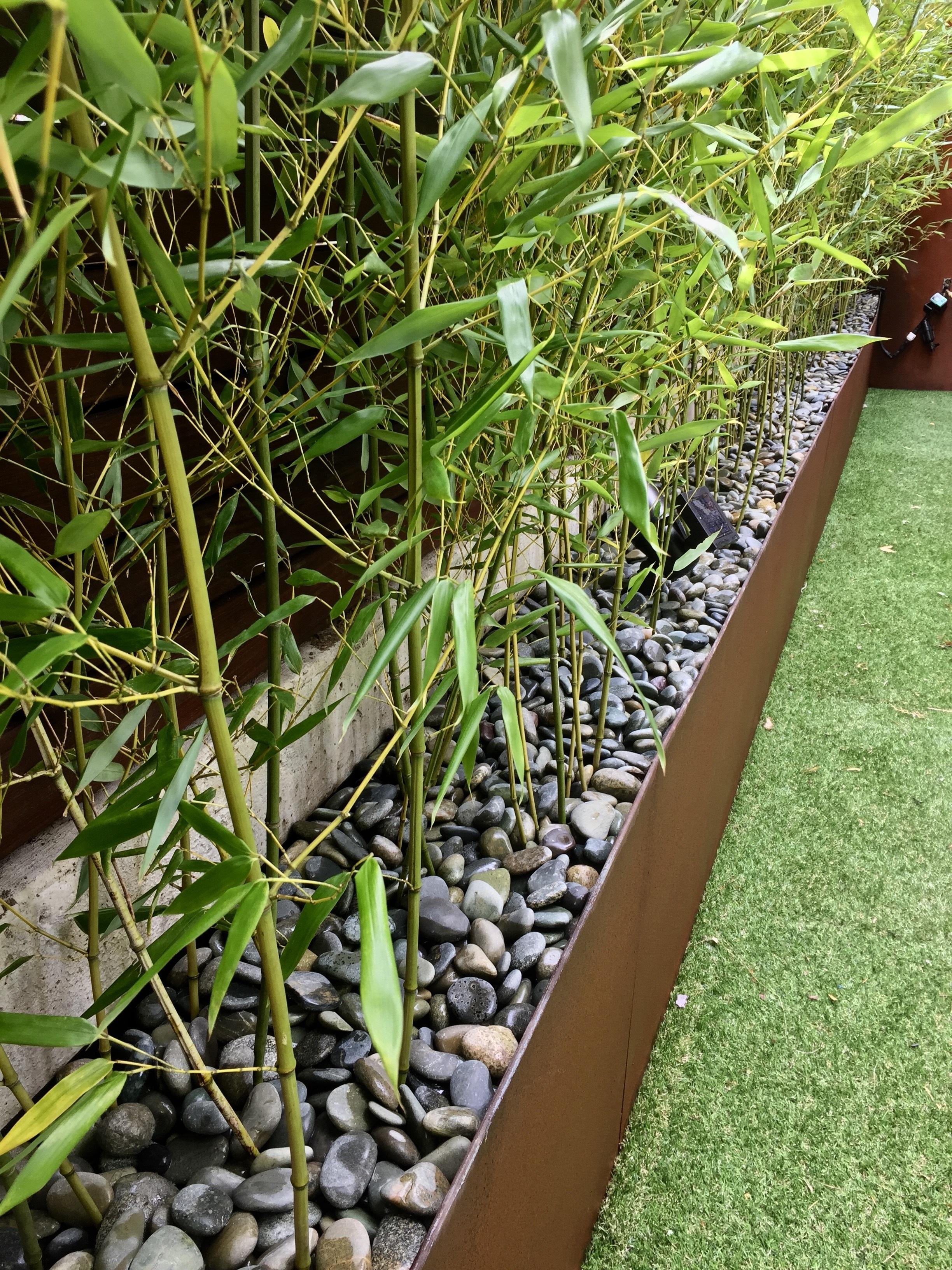 Brooklyn+landscape+designer+urban+zen+bamboo+backyard+urban+garden