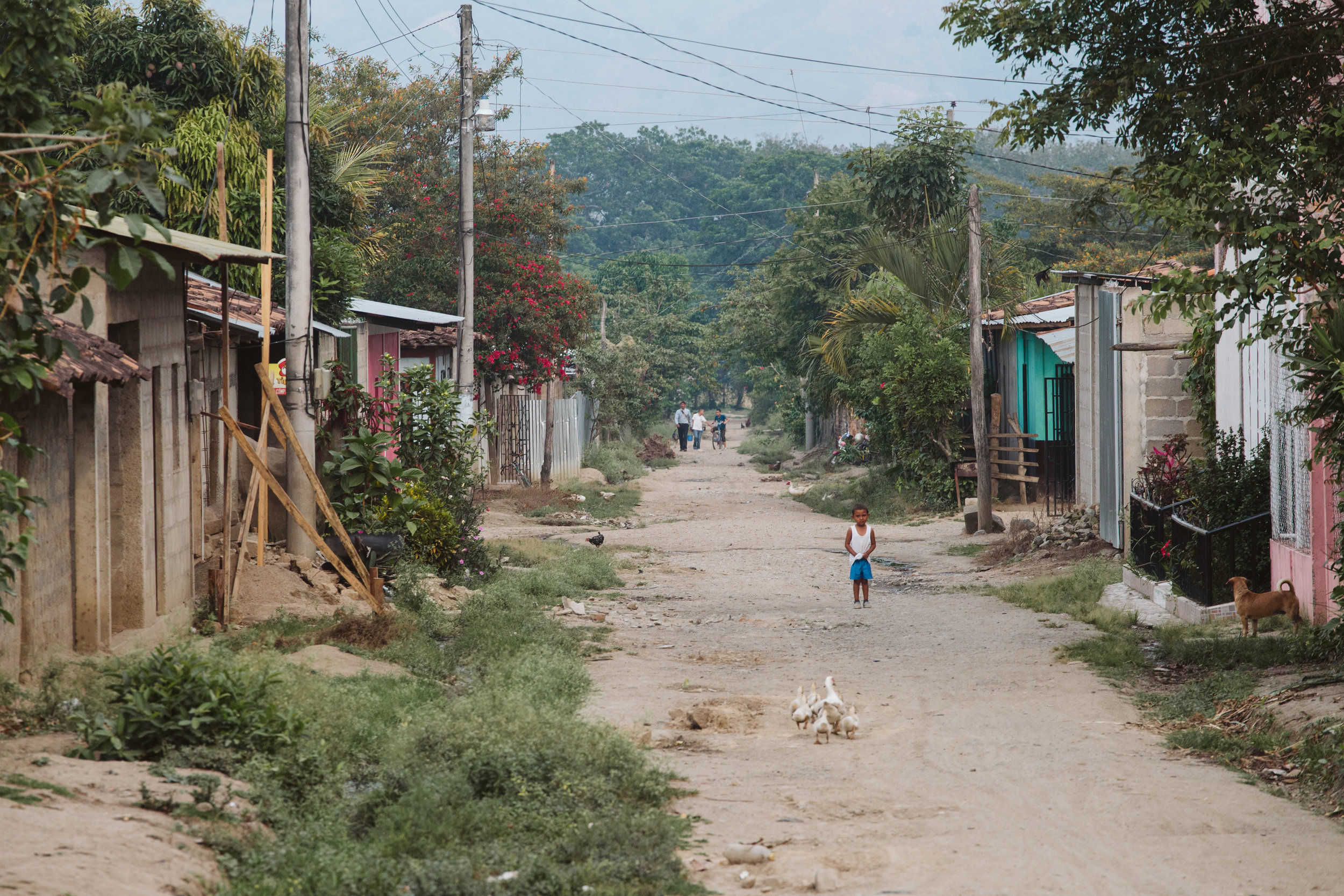 Jalapa (1 of 1).JPG