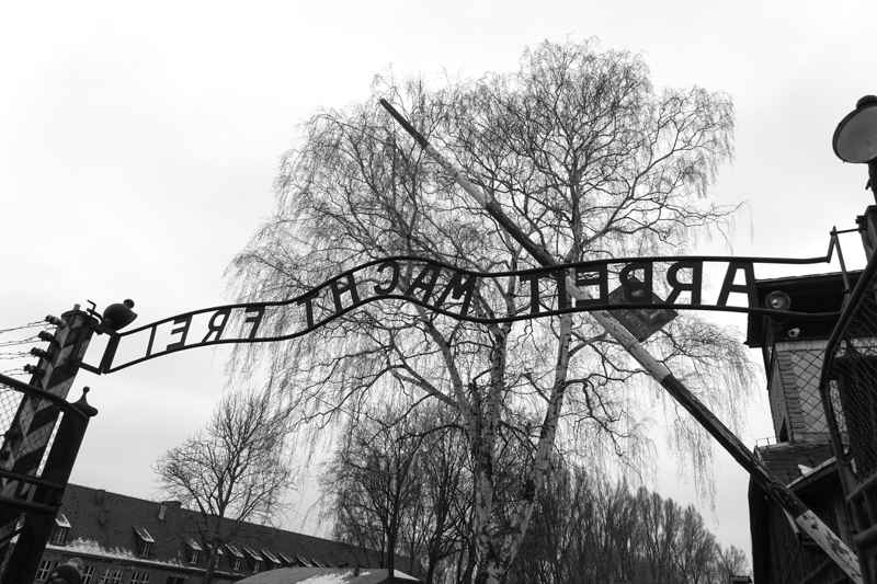 "Auschwitz Gate reading ""work sets you free"""