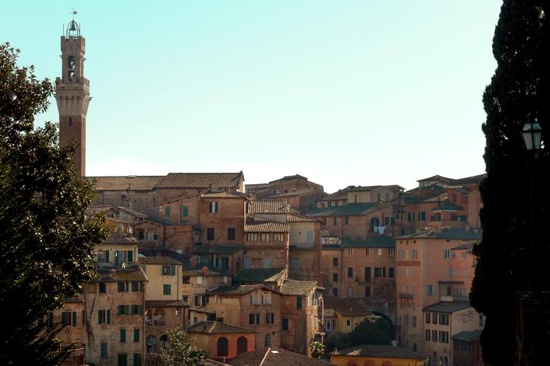 2.10.18. Siena - day trip with my school, Accademia Italiana