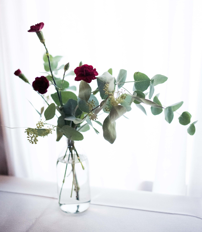blogg blomma.jpg