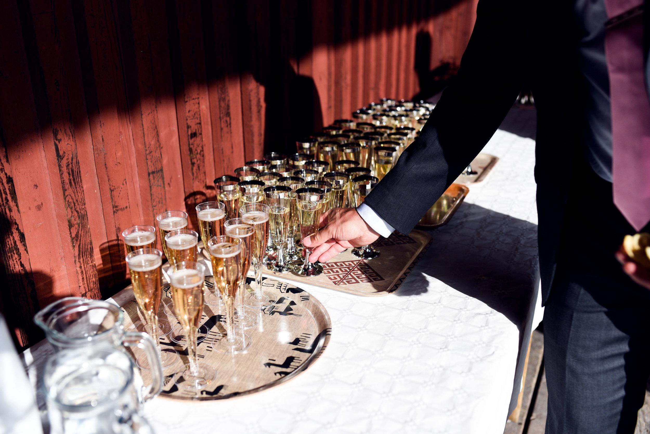 Bröllop2019lågkvall2-5854.jpg