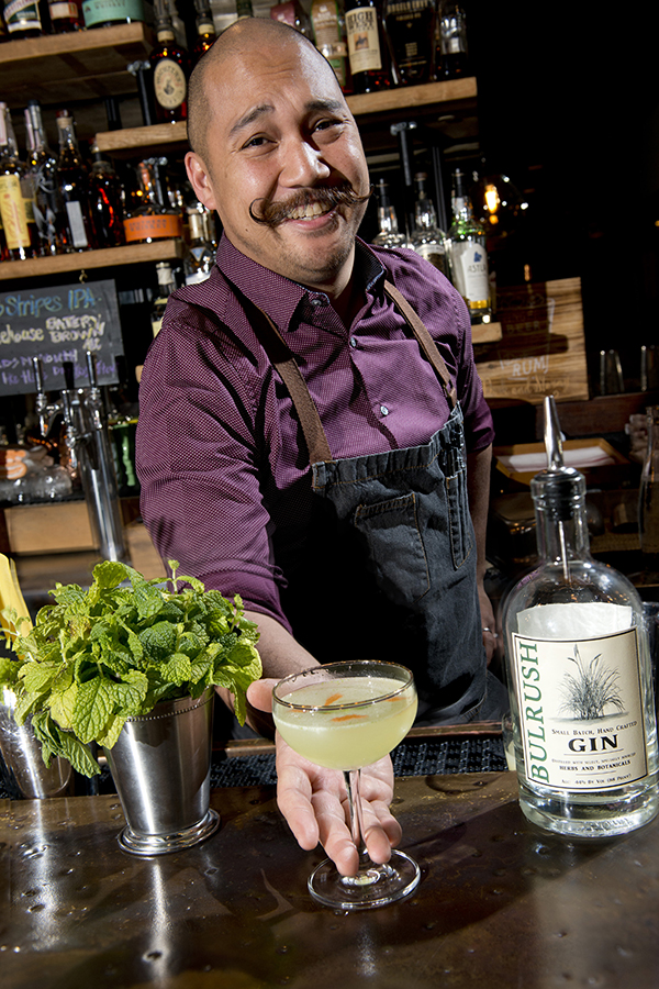 GIN IS IN - CLICK TO READ