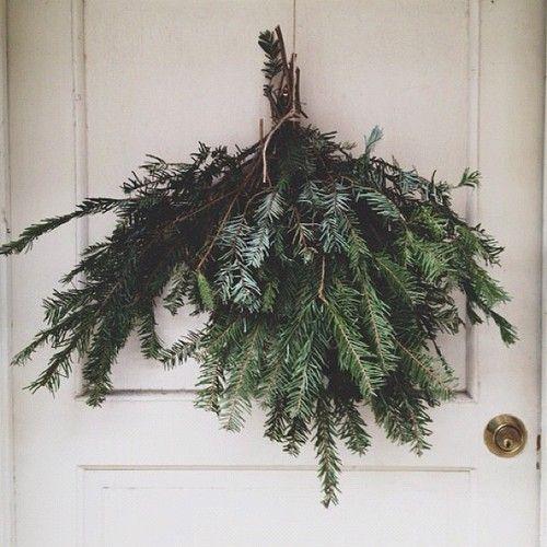 pine.jpg