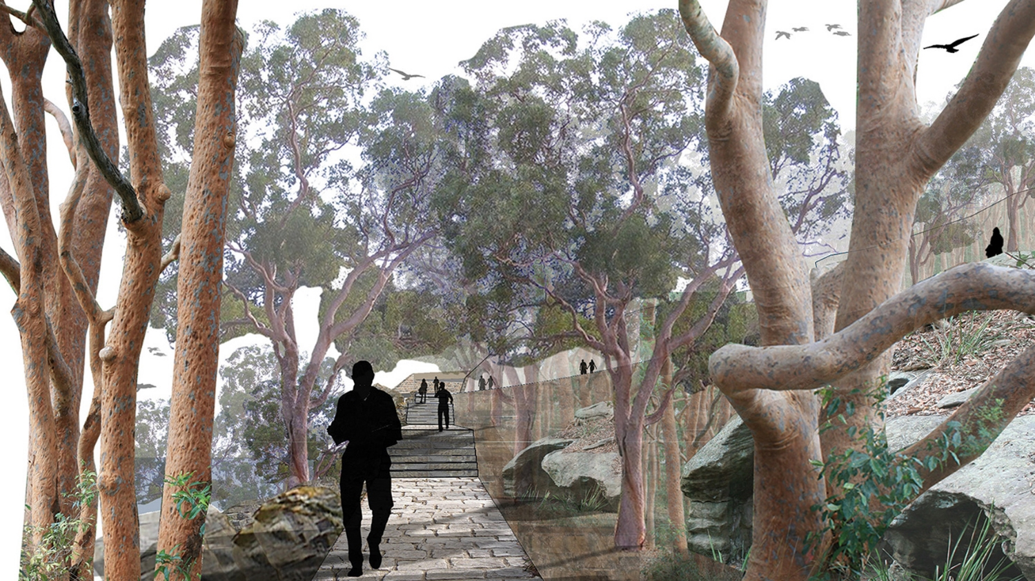 Barangaroo Headland - Design Competition
