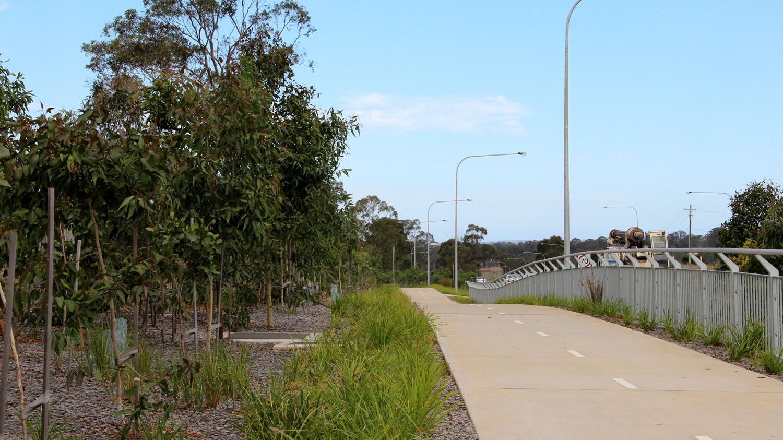 planting-adjoining-the-pedestrian-cycle-shareway.jpg