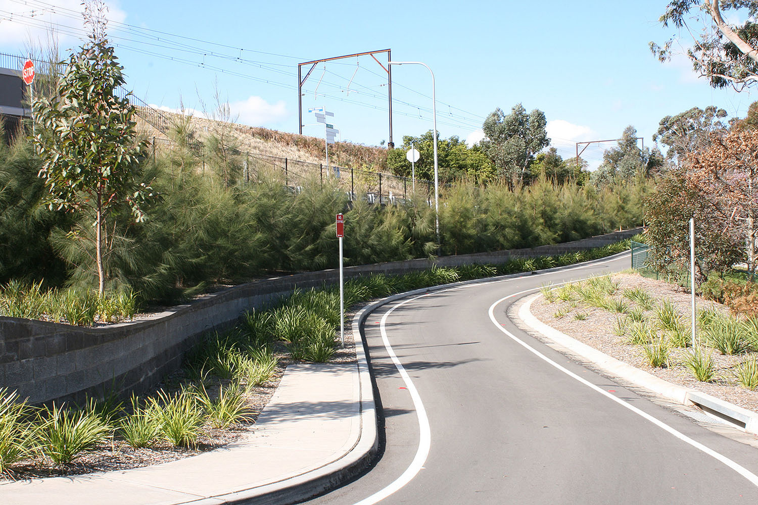 planting-and-retaining-to-access-road.jpg
