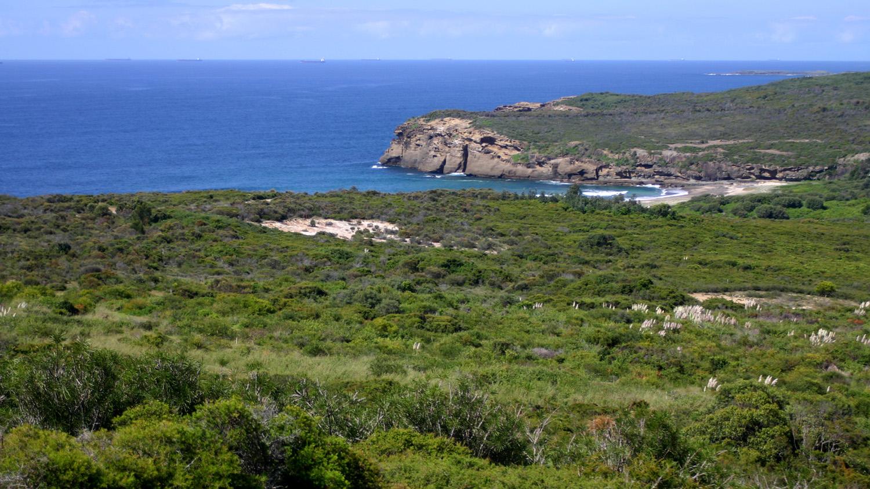 coastal area of site adjoining Pinney Beach.jpg
