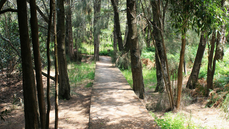 pedestrian-trail-at-salt-pan-reserve.jpg