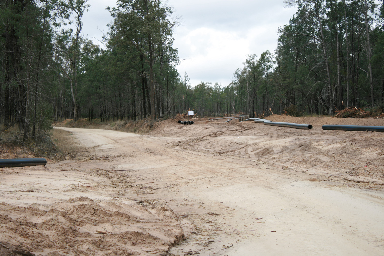 gas pipeline construction in forest.JPG