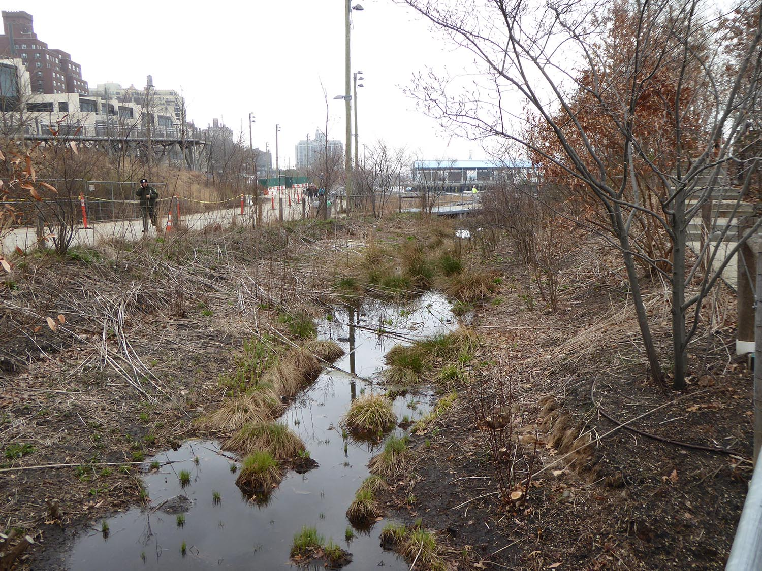 Water quality swale adjoining Pier 1 in winter 1