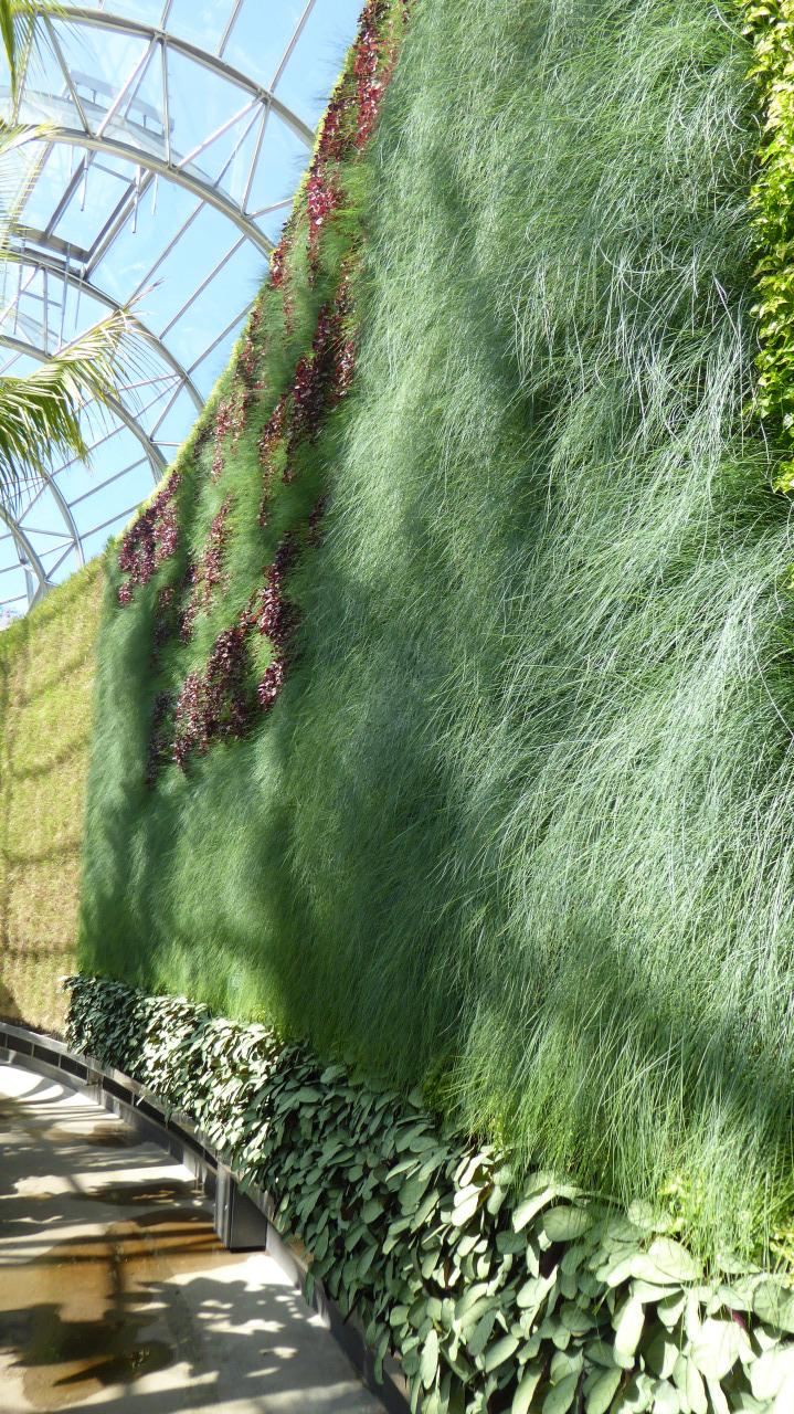 4 green wall 2.jpg