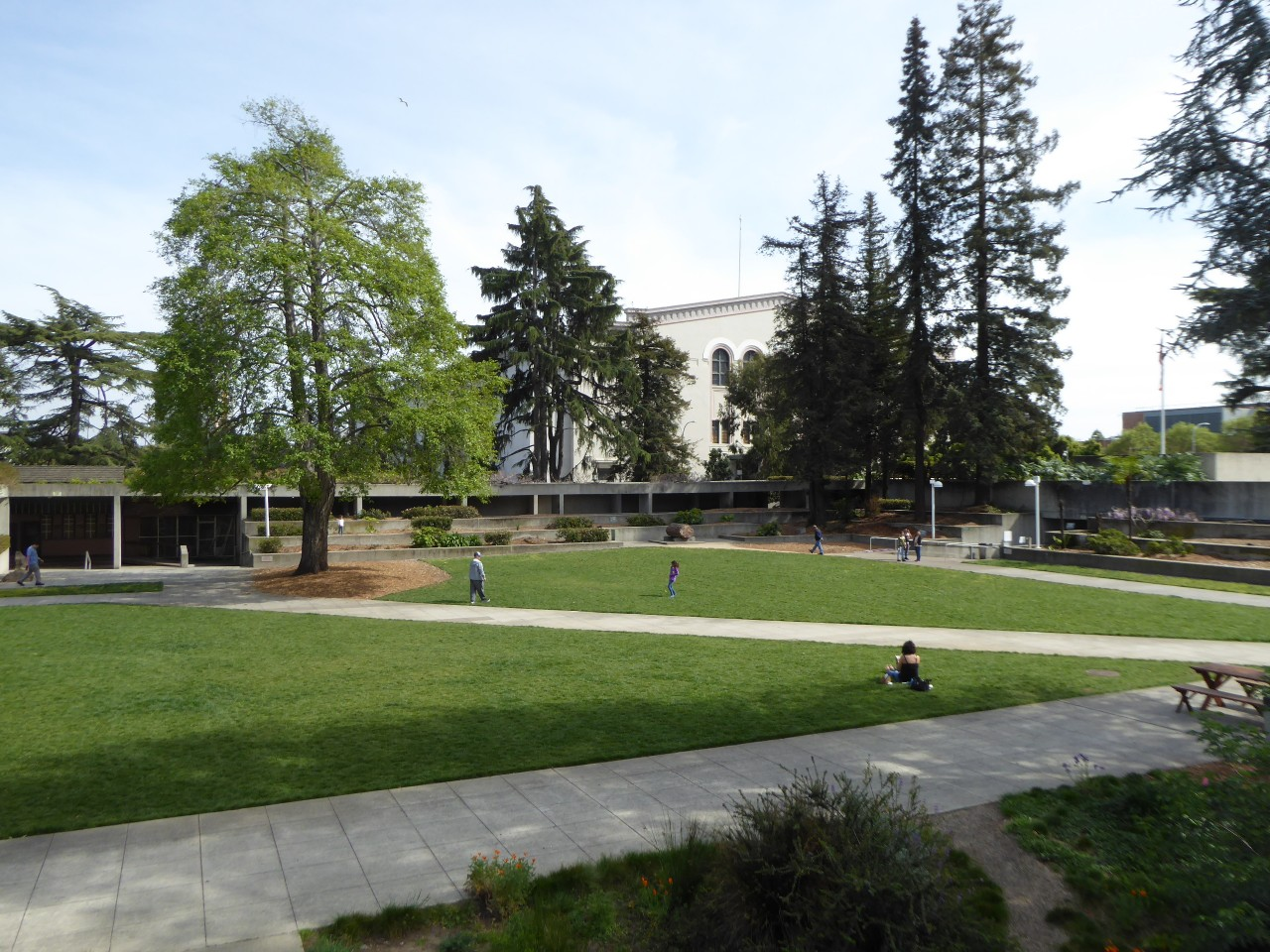 Central lawn + original trees
