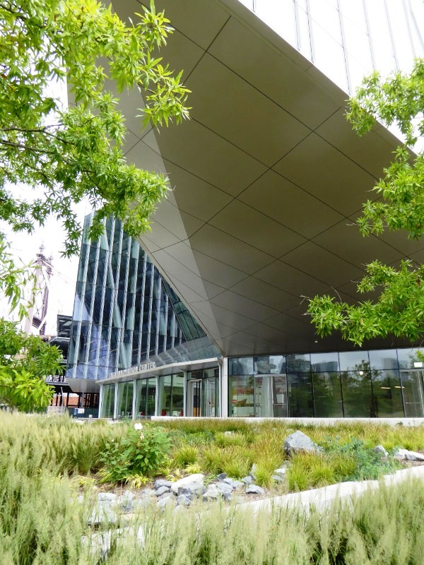 Landscape planting adjoining Tata Innovation Center