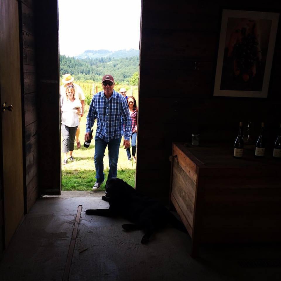 Vineyard Tour.jpg