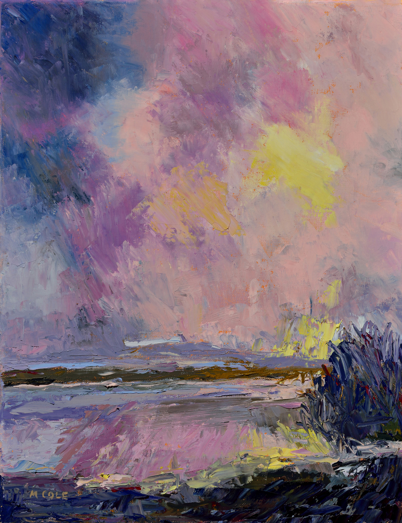 "Marie Cole,  River, Late Afternoon,  oil on linen, 11″ x 14″       Normal   0           false   false   false     EN-US   X-NONE   X-NONE                                                                                                                                                                                                                                                                                                                                                                                                                                                                                                                                                                                                                                                                                                                                                                                                                                                          /* Style Definitions */  table.MsoNormalTable 	{mso-style-name:""Table Normal""; 	mso-tstyle-rowband-size:0; 	mso-tstyle-colband-size:0; 	mso-style-noshow:yes; 	mso-style-priority:99; 	mso-style-parent:""""; 	mso-padding-alt:0in 5.4pt 0in 5.4pt; 	mso-para-margin-top:0in; 	mso-para-margin-right:0in; 	mso-para-margin-bottom:8.0pt; 	mso-para-margin-left:0in; 	line-height:107%; 	mso-pagination:widow-orphan; 	font-size:11.0pt; 	font-family:""Calibri"",sans-serif; 	mso-ascii-font-family:Calibri; 	mso-ascii-theme-font:minor-latin; 	mso-hansi-font-family:Calibri; 	mso-hansi-theme-font:minor-latin;}"