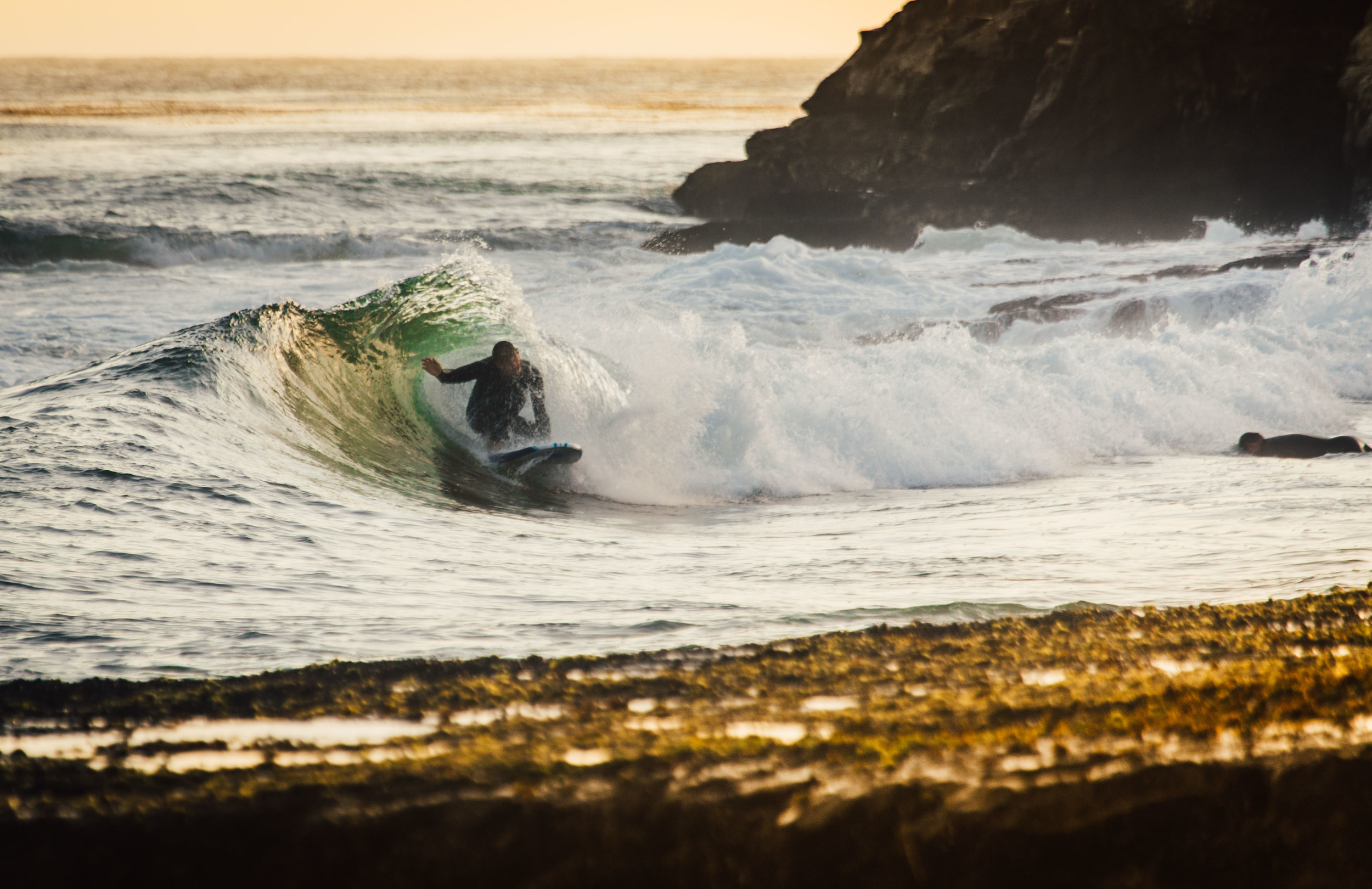 Surf Daddy Brewing The Lifestyle - Photos By Erika Alatorre