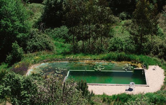 7a - piscina T1.png