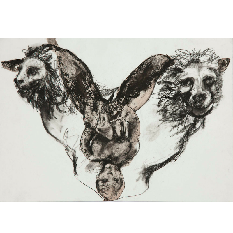 Double Lions, 2017, mixed media on paper, drawing, wine & ink