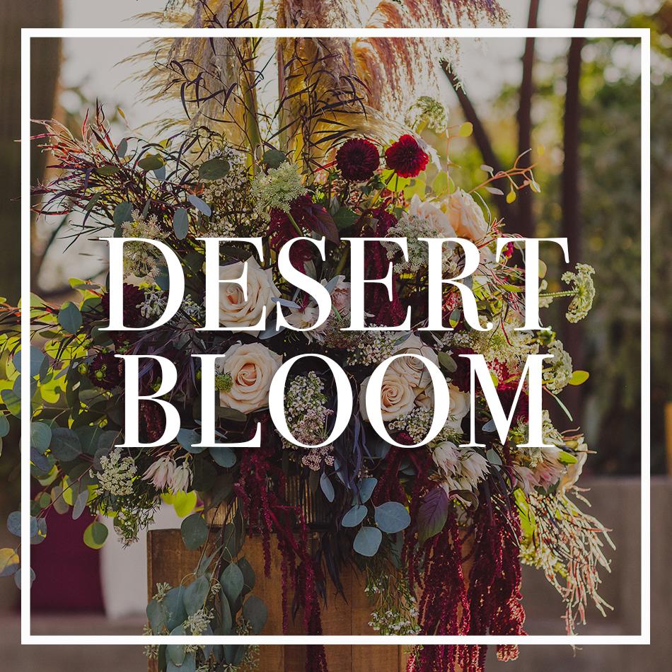 WCFD-Portfolio-COVER-DesertBloom.jpg