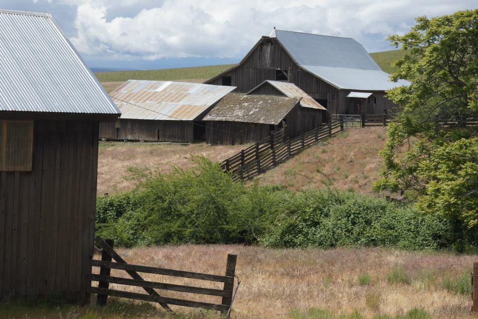 Utilitarian-Farm-Buildings_2.jpg