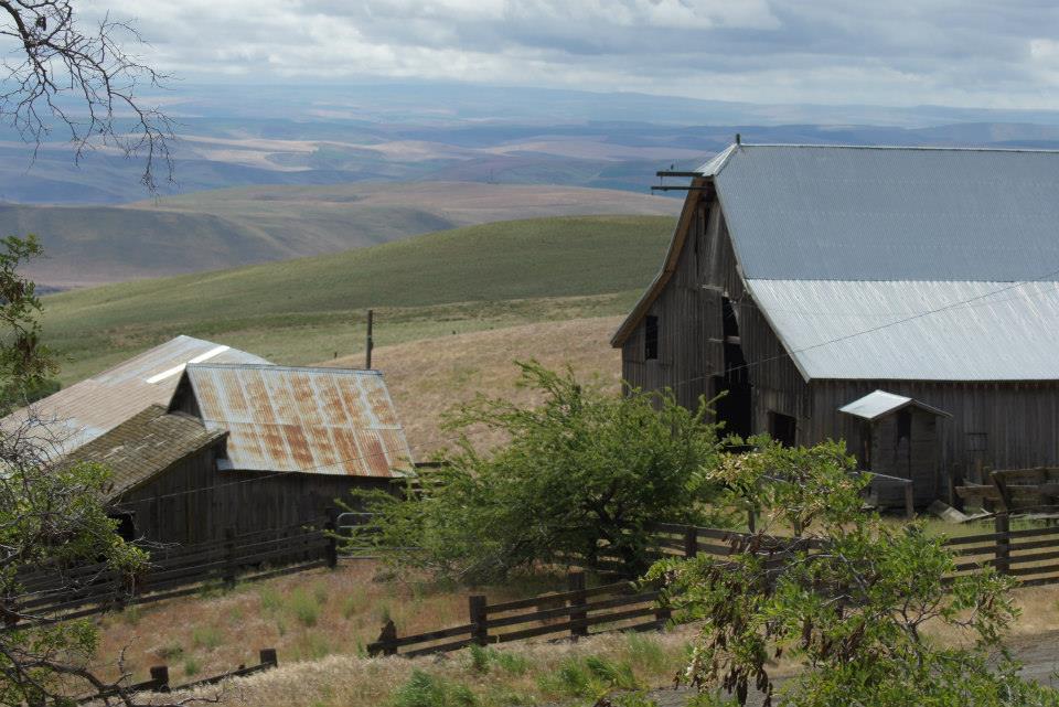 Utilitarian-Farm-Buildings_5.jpg