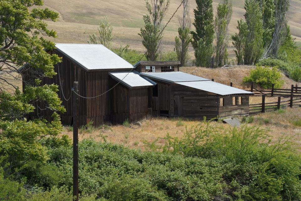 Utilitarian-Farm-Buildings_6.jpg