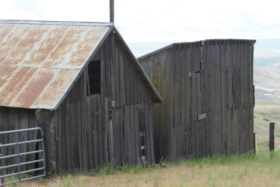 Utilitarian-Farm-Buildings_8.jpg