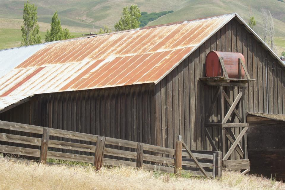 Utilitarian-Farm-Buildings_10.jpg