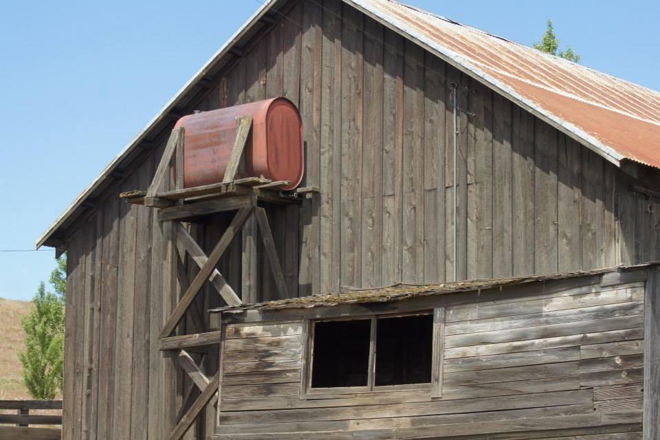 Utilitarian-Farm-Buildings_11.jpg