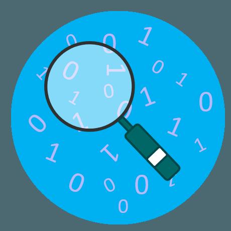 Data-Audit.png