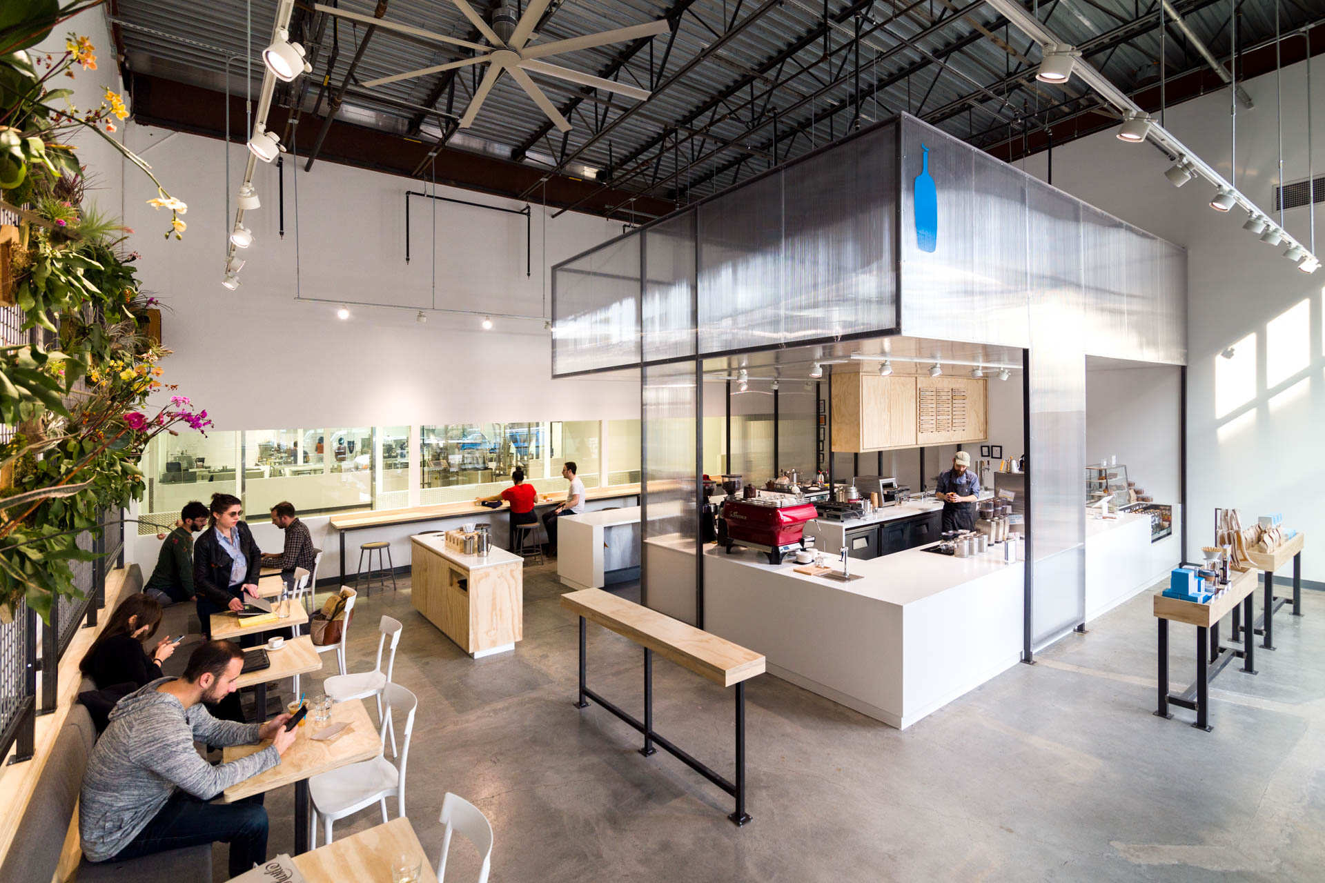 An overview of Blue Bottle's Bushwick location, from plant wall to BigAssFan to merch bins