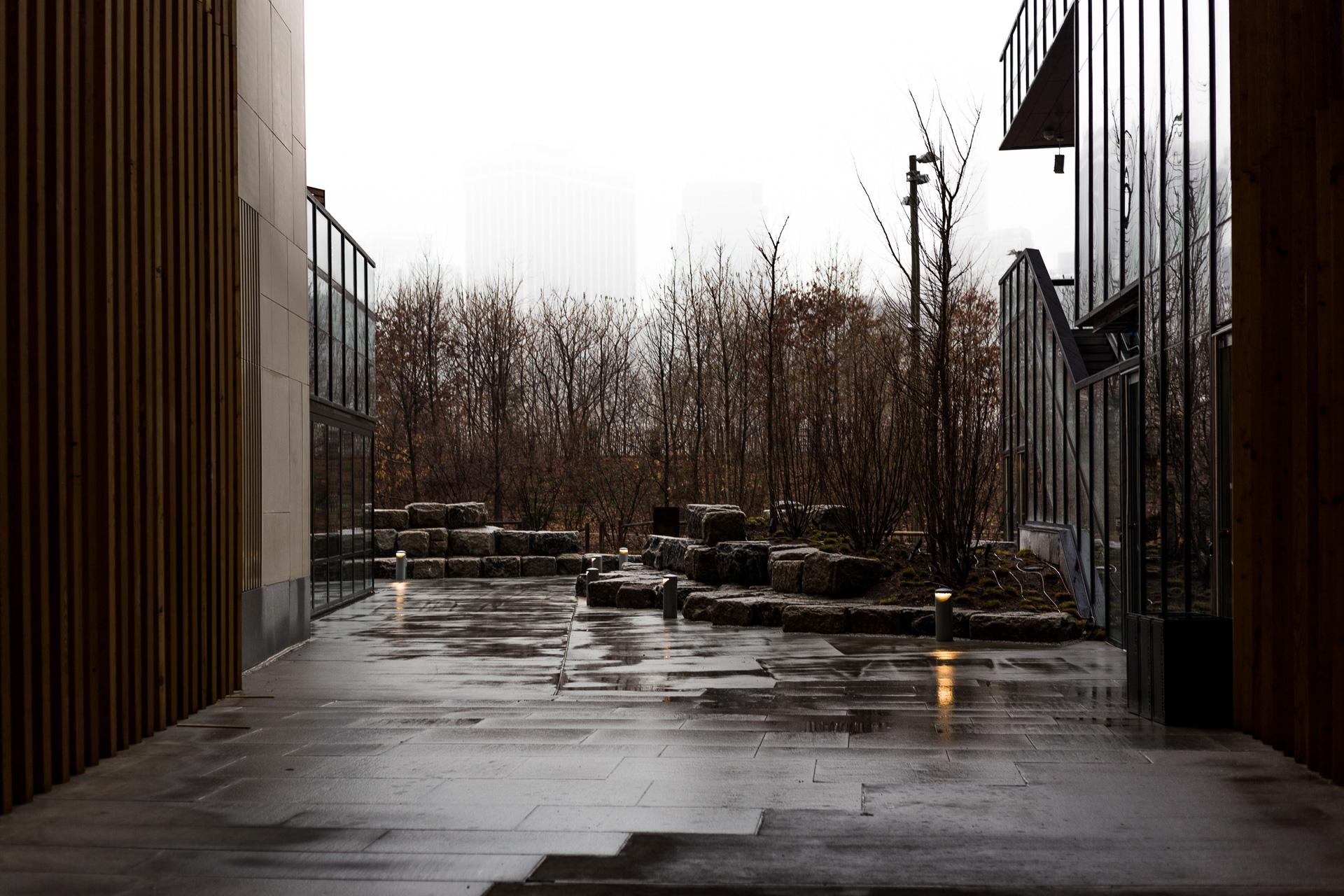 One Hotel Dumbo Rainy-1.jpg
