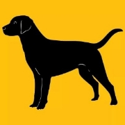 BlackLabDigital_logo.jpg