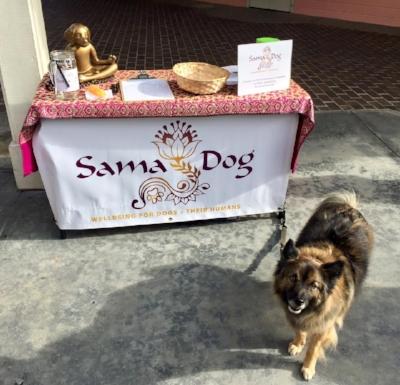 Sama-Dog-Pepper